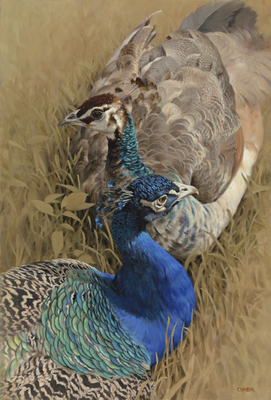 Claire Naylor - COURTSHIP - GICLEE - 29 1/2 X 20