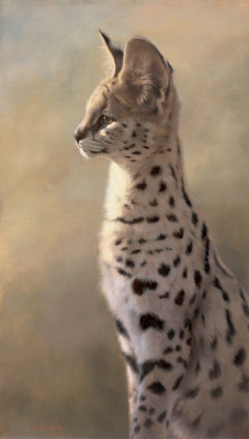 Claire Naylor - SERVAL SENTRY - GICLEE - 24 X 14